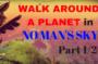 NMS walk around